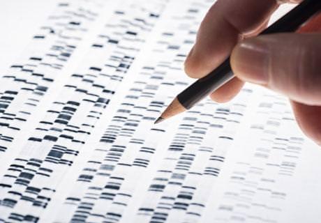 Молекулярная Генетика -ICOftalmologia