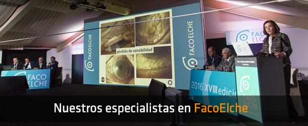FacoElche 2016