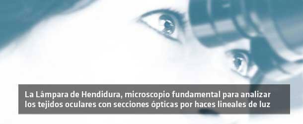 Exploración Adulto - ICOftalmología
