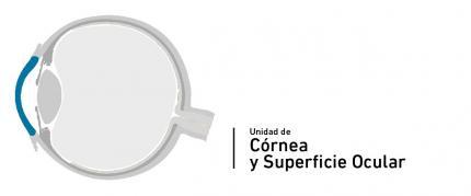 Cornea and Ocular Surface Unit